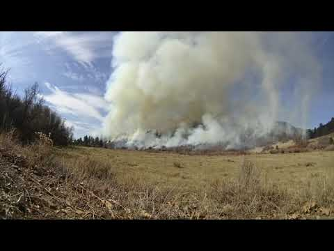 Wildland Fire Management | Fire Prevention and Control
