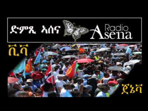 Voice of Assenna: Geneva Demonstration Radio Report Final Part - Monday, June 27, 2016
