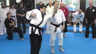 Karate-Jutsu & Combative Flow Seminars 2005 - 2007 Troy J. Price Action Clips