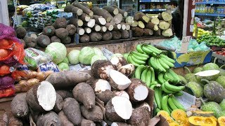Download Video 8 Tips for Buying Good Yam in Obodo Oyibo | All Nigerian Recipes MP3 3GP MP4