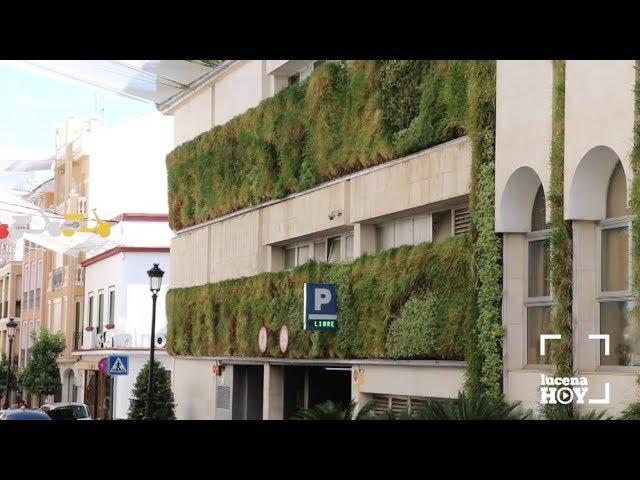 VÍDEO: El equipo de gobierno decidirá en unos meses el futuro del polémico jardín vertical de la Casa Consistorial