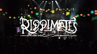 RIDDIMATES - Come On - Live at SHIBUYA WWW 撮影・編集:仙田祐一郎 ...