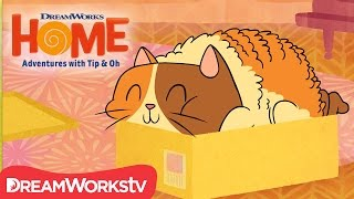 How To Be A Cat | DreamWorks Home Adventures With Tip and Oh