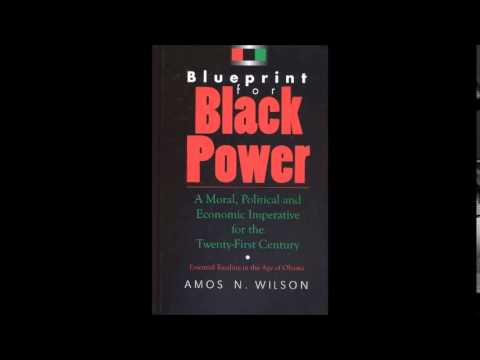 Amos N. Wilson | The Psychology of Co-operative Economics