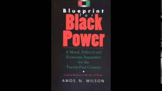 Amos N. Wilson | The Psychology of Co-operative Economics