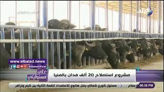 أحمد موسى يعرض تقريرا عن استصلاح 20 ألف فدان في المنيا.. فيديو