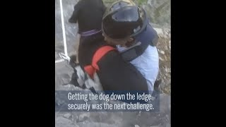 Footage of dog rescue in Montgomery County