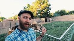 Micro Farming the (Arizona) Suburbs