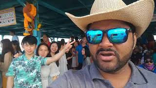 Sky drive  Pattaya Coral Island 1   Walking Street   Parasailing   Underwater Sea Walk   Bangkok