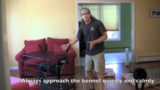 Kennel Up, How To Dog Training