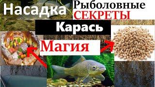 ЗАБЫЛ Рыболовные Рецепты на Карася Наживка для Рыбалки Убийца Карася Карпа Наживка на Плотву