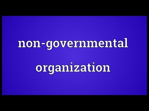 Non-governmental organization Meaning