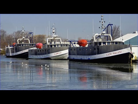 Fish Tugs Wintering At Wheatley Harbour, Lake Erie (2020)