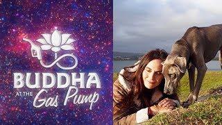 Anna Breytenbach  Buddha at the Gas Pump Interview