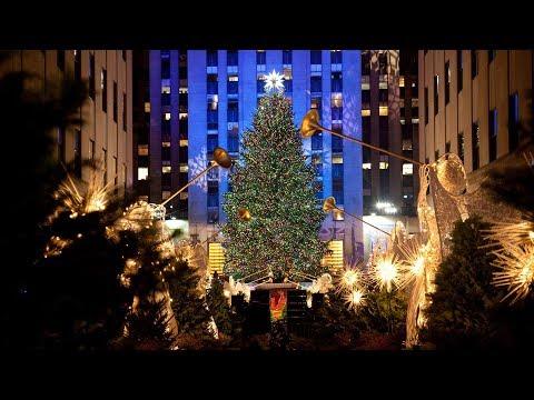 Kristin Lessard & Steve Kelly  - Rockefeller Center Christmas Tree Going to Habitat for Humanity!