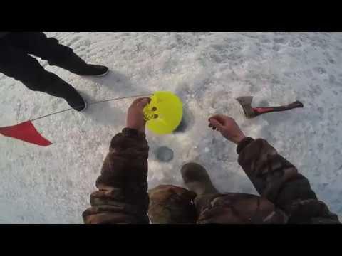 Супер рыбалка в Шарыпово, Парное, день второй!
