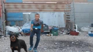 Qarizma Rap - 21Mahmut - Qarizma Salih BURASI TEHLİKE (ADANA)