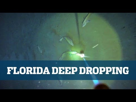 Deep Drop Seminar - Florida Sport Fishing TV