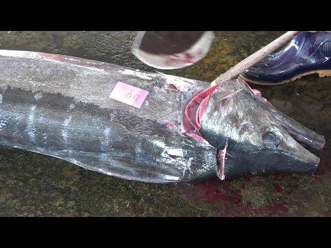 450 Lb Giant Swordfish Cutting For Sashimi And Sushi -巨大旗魚切割生魚片和壽司