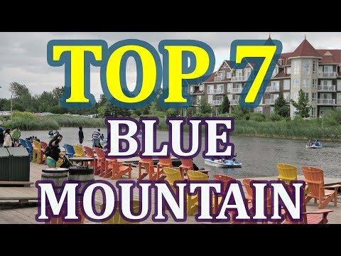TOP 7 Blue