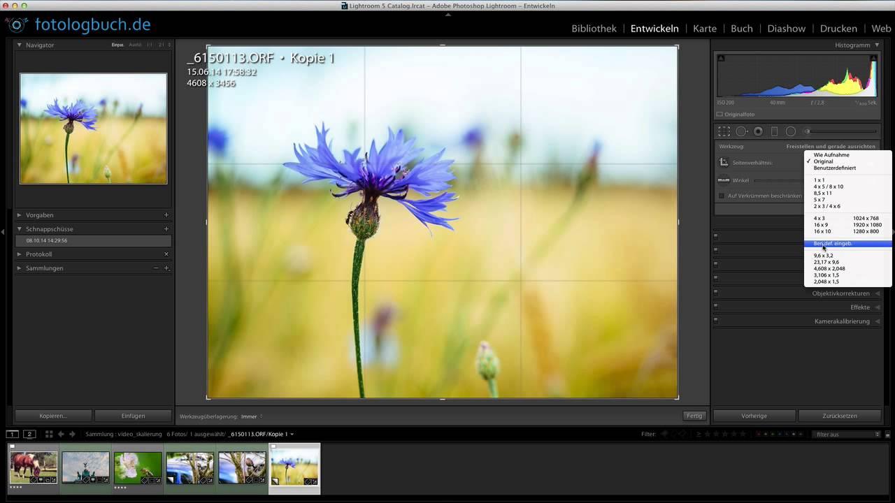 Lightroom Quicktipp - Fotos elegant pixelgenau beschneiden - YouTube