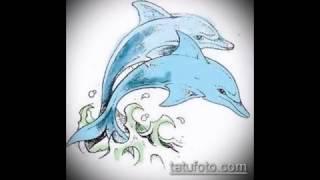 эскиз тату дельфин - информация и рисунки для тату