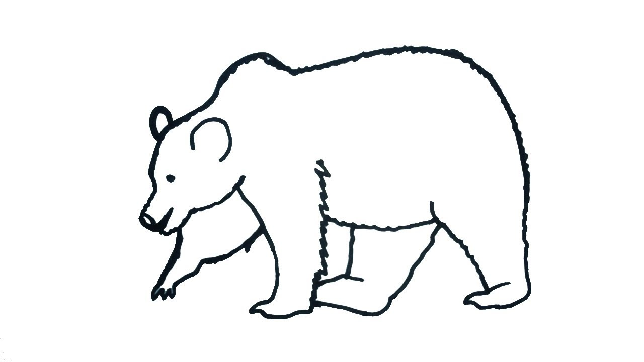 how to draw a bear easy step by step drawing for kids children