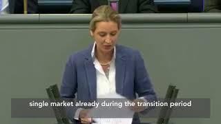 WATCH: Bundestag speech SCOLDING Merkel for THREATS to Britain prompts HUGE APPLAUSE