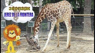 Испанский зоопарк (Зоолого-ботанический сад)