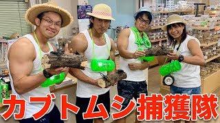 真夏のカブトムシ捕獲大作戦! 見学店 検索動画 21