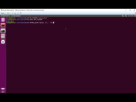 Linux/Unix Split String By Delimiter And Get N-th Element