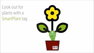 smartplant app see how life grows