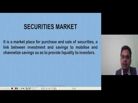 Overview of the Capital Market