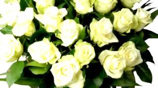 Брянцев Букет из белых роз!