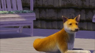 Sims 3: What Does the Fox Say