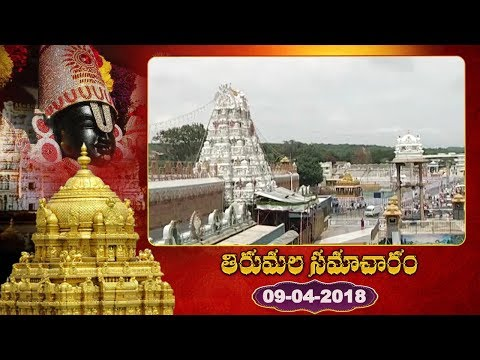 తిరుమల సమాచారం Today In Tirumala - TTD News - Tirumala Tirupathi Devasthanam | YOYO TV Channel