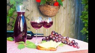 Рецепт вина от дедушки Валико !