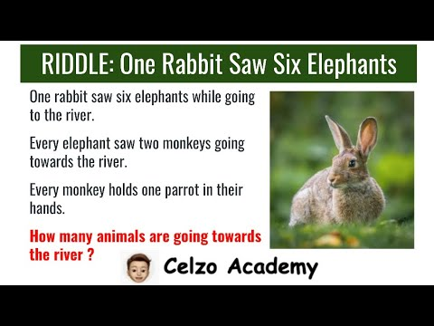 Battle Of Math And English - Math Riddle (One Rabbit Saw Six Elephants While Going To The River)