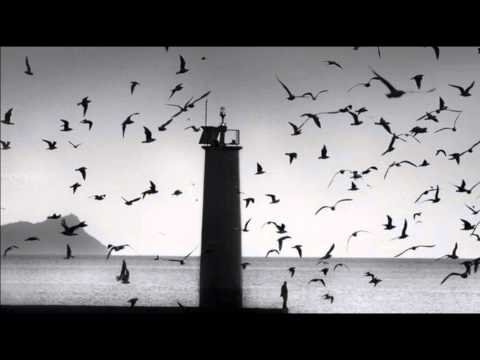 The Cinematic Orchestra - Arrival of the Birds scaricare suoneria