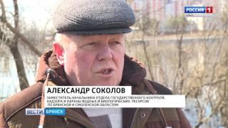 """""""Вести. Брянск"""". (эфир 22.03.2017 в 20:45)"""