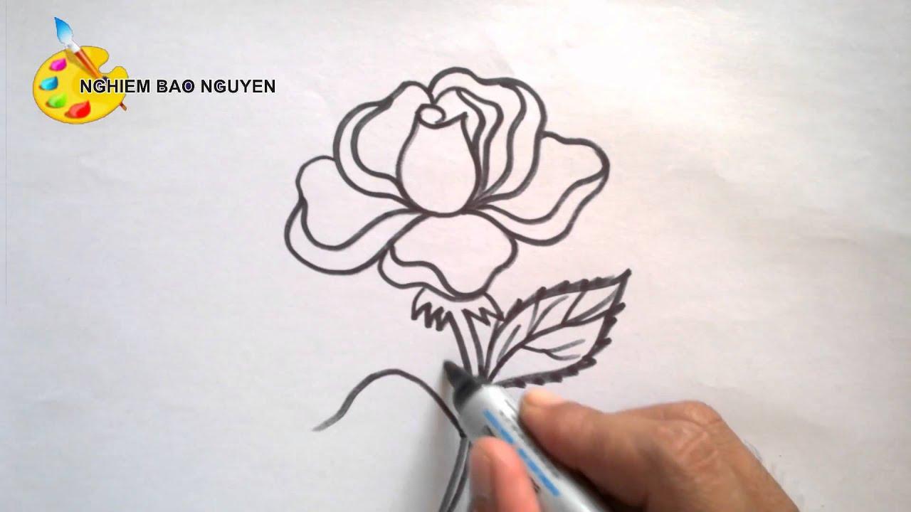 Vẽ hoa hồng/How to Draw Rose
