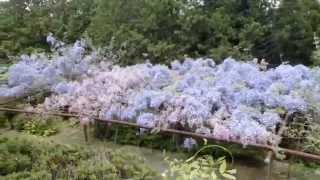 2014 04 25 みやまの里森林公園