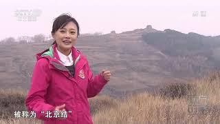 《远方的家》 20200330 世界遗产在中国 雄关漫道(下)| CCTV中文国际