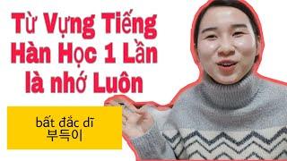 (tập11) BÍ QUYẾT HỌC TIẾNG HÀN HIỆU QUẢ|Chuyện học 한국어 공부 잘하는 비결