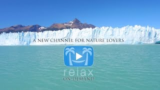 [Official Commercial] Nature Relaxation™ On-Demand Subscription + Apps thumbnail