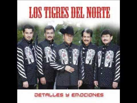 LOS TIGRES DEL NORTE (America).