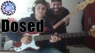 Dosed (Red Hot Chili Peppers) BASS COVER