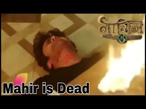 Mahir is dead and bela take revenge to sumitra | naagin 3 latest update