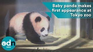 Baby panda makes first appearance at Tokyo zoo