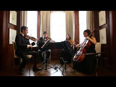 Rather Be- Clean bandit ( string quartet cover) Wellington Music